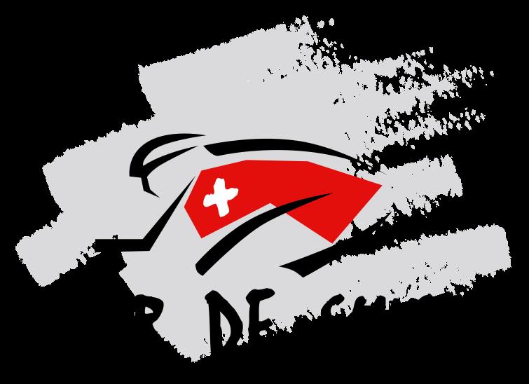2011 tour de france logo. With the Tour de France barely